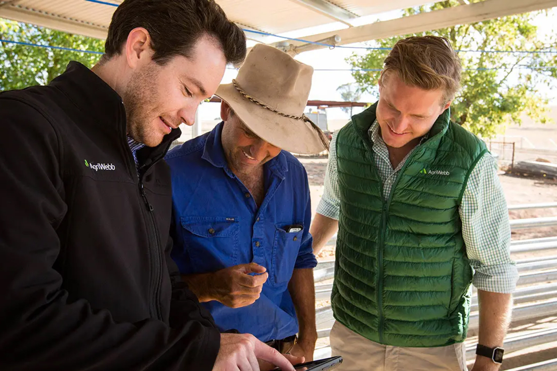 WordPress developers farm management software NZ