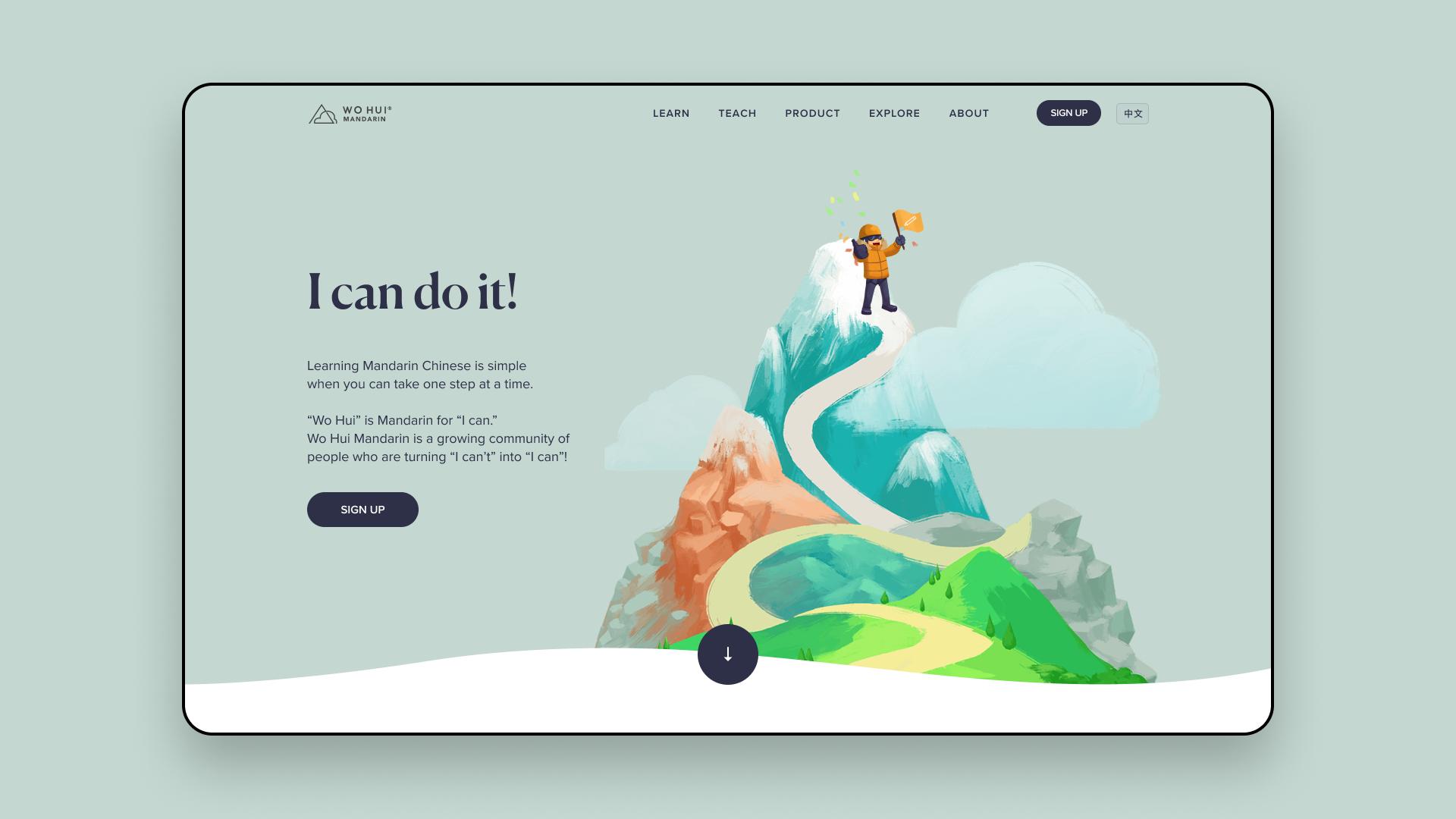 WordPress design agencies NZ